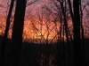 sunrise-2009-11-23_2529_edited-1